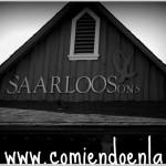 Saarloos & Sons: Vino & Cupcakes