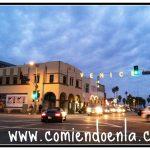 Figtree's Café & Grill – Venice Beach